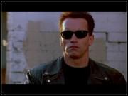Schwarzenegger made an appearance during Ann's stint as an AmeriCorps member in the Teach For America program....sort of.