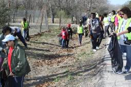 AmeriCorps Alums and other volunteers in Houston removed over 156,000 lbs of litter during 2014 MLK, Jr. Day