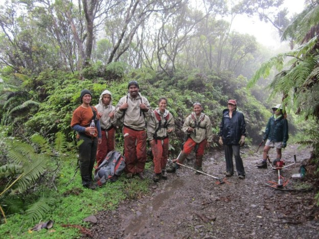 Kupu HYCC Team Molokai doing trail maintenance in Kamakou rainforest preserve with The Nature Conservancy