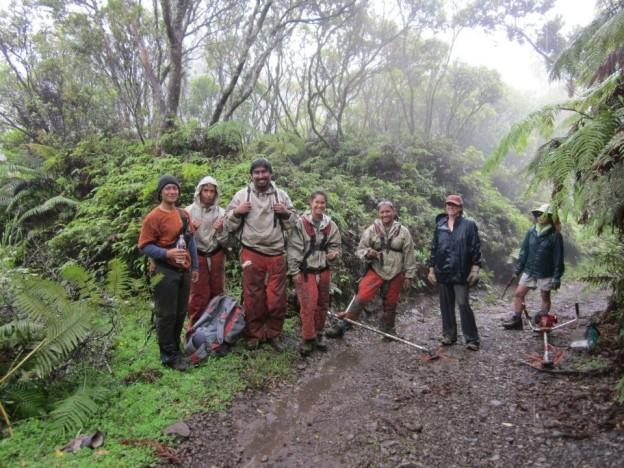 Kupu HYCC Team Molokai doing trail maintenance in Kamakou rainforest preserve with The Nature Conservancy